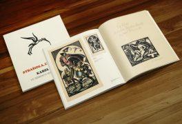 Kniha o Karlu Němcovi