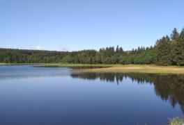 Rybník Sykovec prochází revitalizací, bude doplněn rekreační pláží