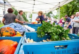 Sobotní farmářské trhy rozhodně budou!!