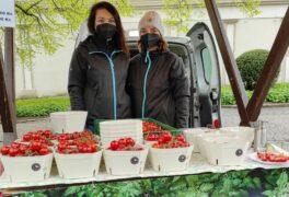 První zeleninu a zdravé mlsání nabídne červnový farmářský trh