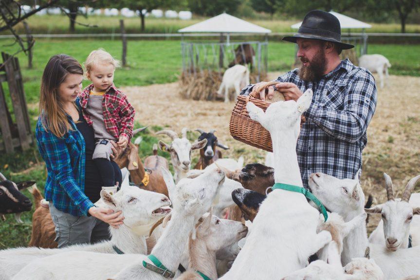 Farmářský trh v rámci Svatováclavských slavností – sobota 25. září